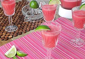 watermelonspritzer1