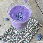 Low Fat Blueberry Protein Smoothie: No Sugar Added