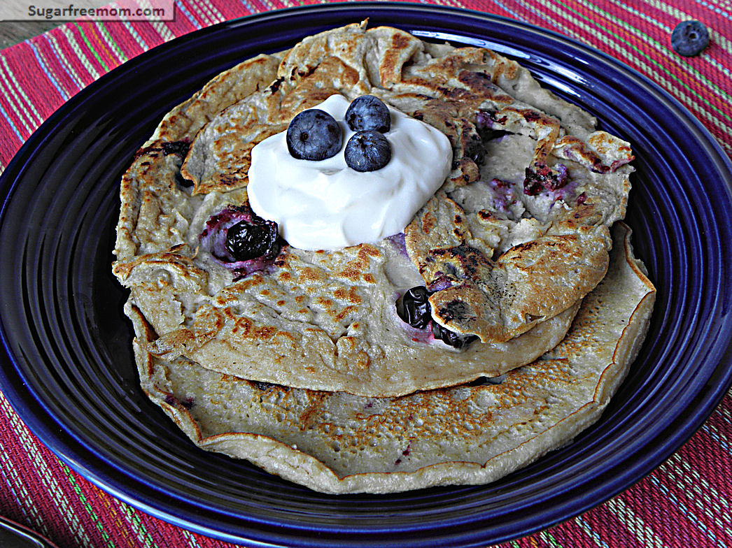 Blueberry Oat Protein Pancakes No Sugar Added Family Style
