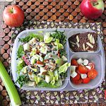 Mayo Free Waldorf Salad Meal -To-Go