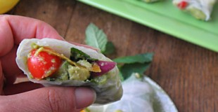 Chicken Avocado Salad Spring Rolls