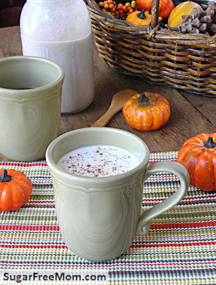 pumpkincreamer1. Topped here with a little Dairy Free Whipped Cream ...