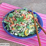 Soba Noodle Vegetable Salad with Sesame Peanut Dressing