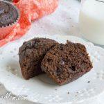 Sugar-Free & Dairy Free Chocolate Muffins