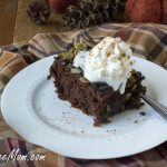 Crock Pot Gluten Free Chocolate Pumpkin Cake