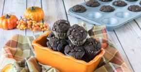 mini chocolate pumpkin cupcakes4 (1 of 1)