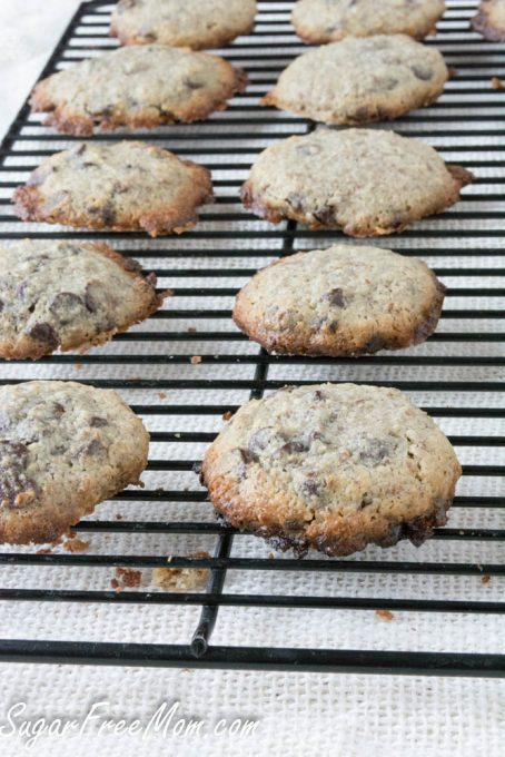 chocolate chip cookies2 (1 of 1)
