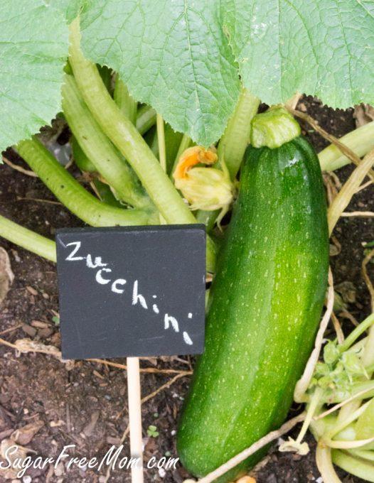 cucumber gremolata5 (1 of 1)