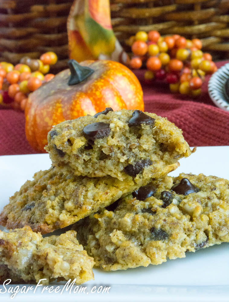 pumpkin chocolate chip cookies3 (1 of 1)