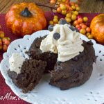 Sugar-Free Low Carb Chocolate Pumpkin Mug Cake