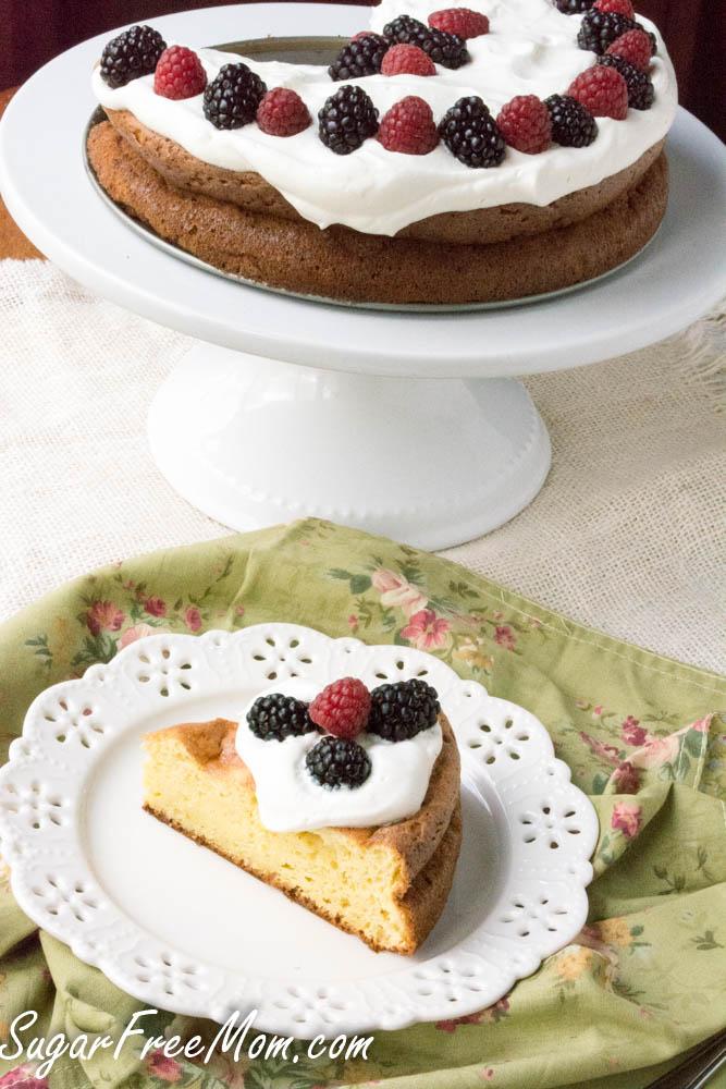 sponge cake2 (1 of 1)