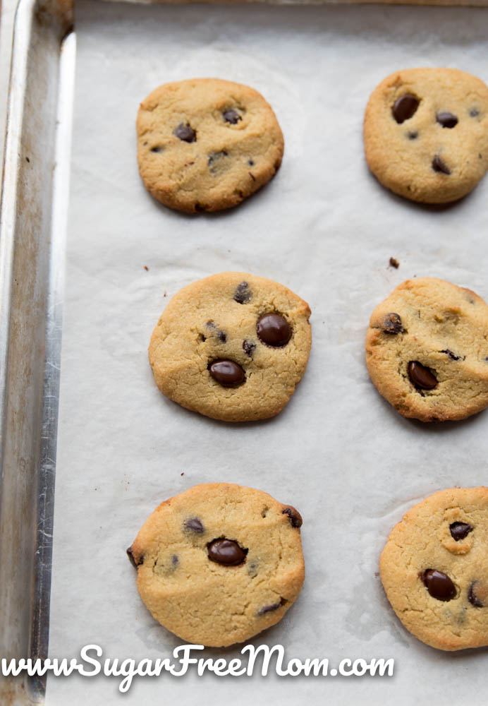 Sugar Free Low Carb Chocolate Chip Cookies Keto Nut Free