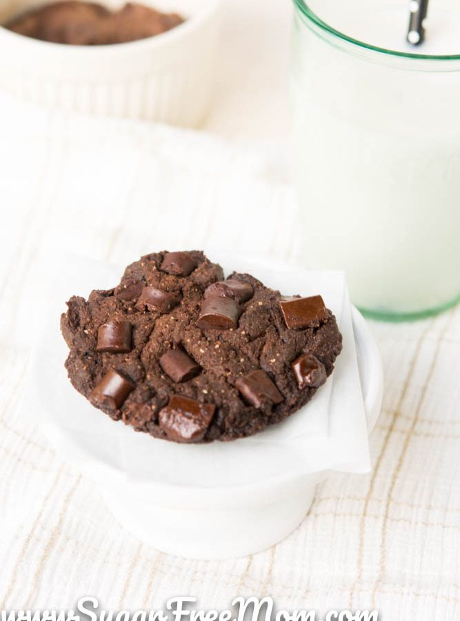 Sugar Free One Minute Fudge Cookie (Low Carb and Keto)