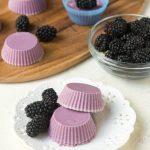 Keto Blackberry Fat Bombs (Paleo, AIP)