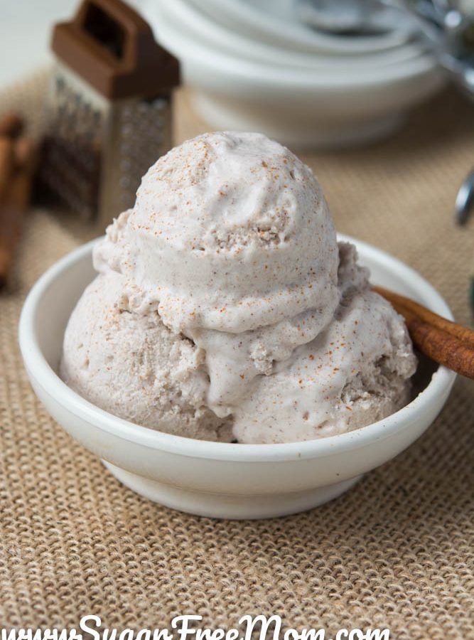Keto Dairy Free Cinnamon Ice Cream