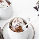 Low Carb Chocolate Pumpkin Spice Mug Cake
